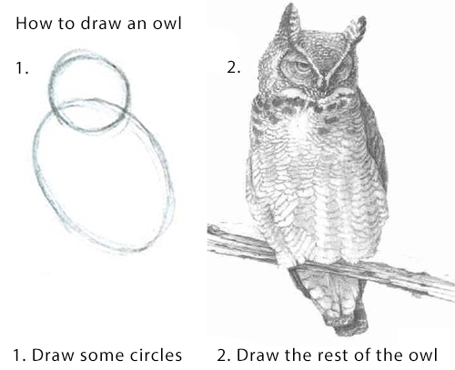 Two pictures demonstrating how to draw an owl. The first picture is of two circles, the second is a detailed drawing of an owl.