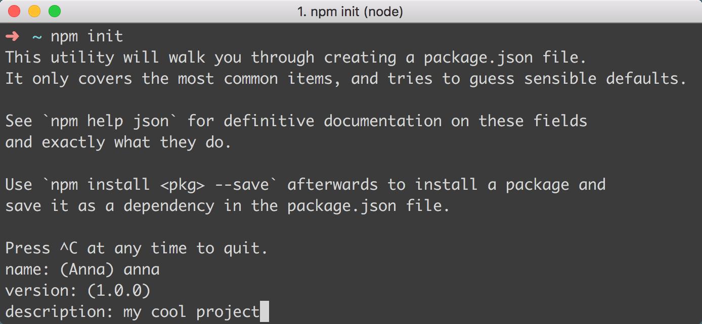 npm init command line