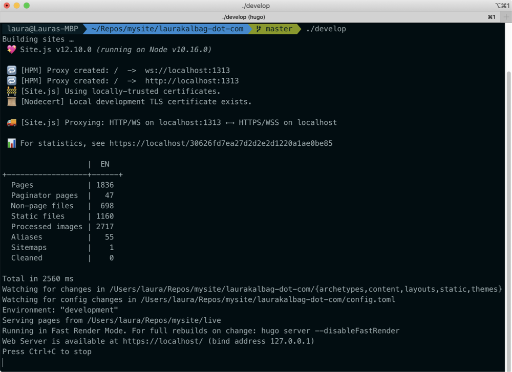 screenshot of my Terminal showing Site.js's status messages followed by Hugo's status messages.